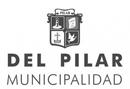 logo del pilar